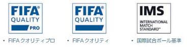 FIFA検定ロゴ